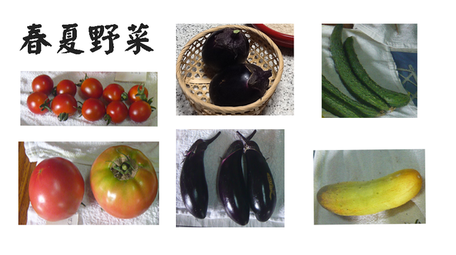 春夏野菜2007.png