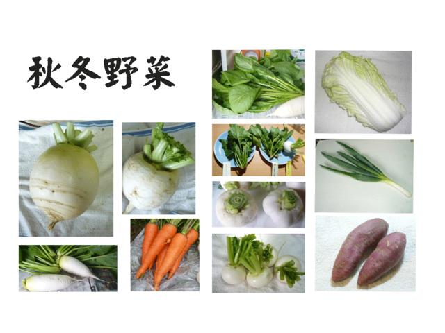 秋冬野菜2017.png